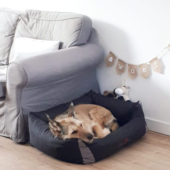 slinger hond woef huisdier liefslabel