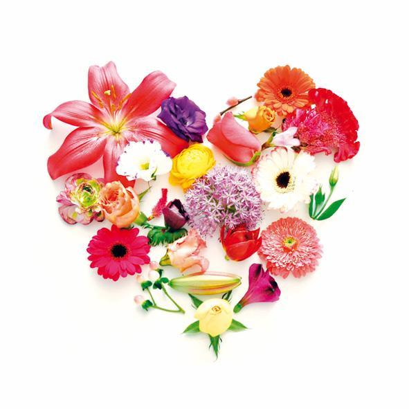 Leve de Lente hart