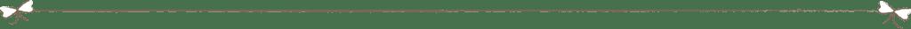 lijn-slinger-(bruin)